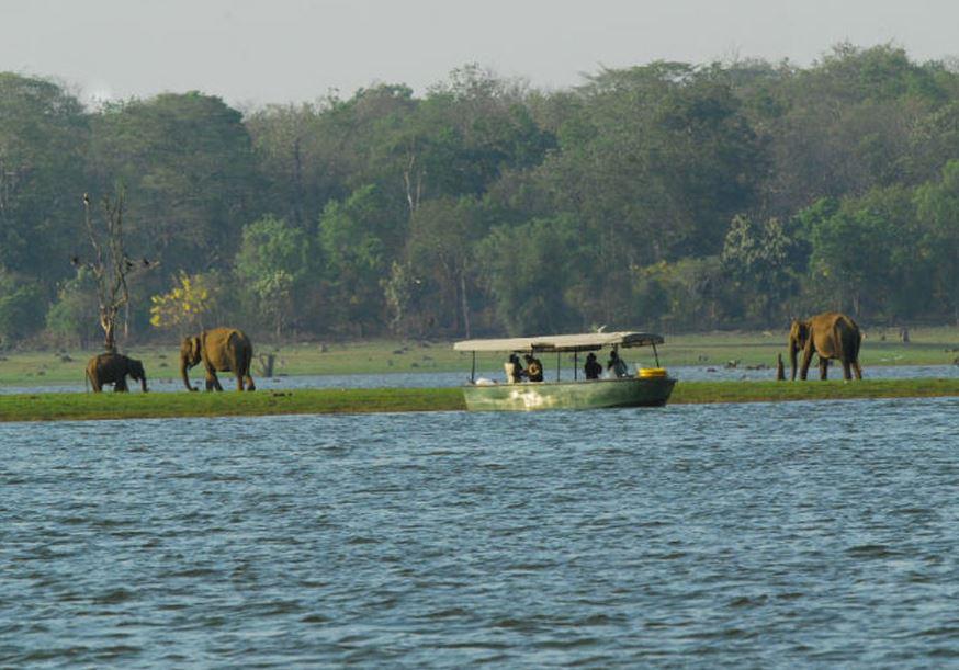 Kabini River Boat Safari